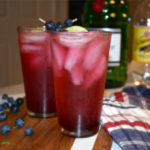 Blueberry Gin & Tonic