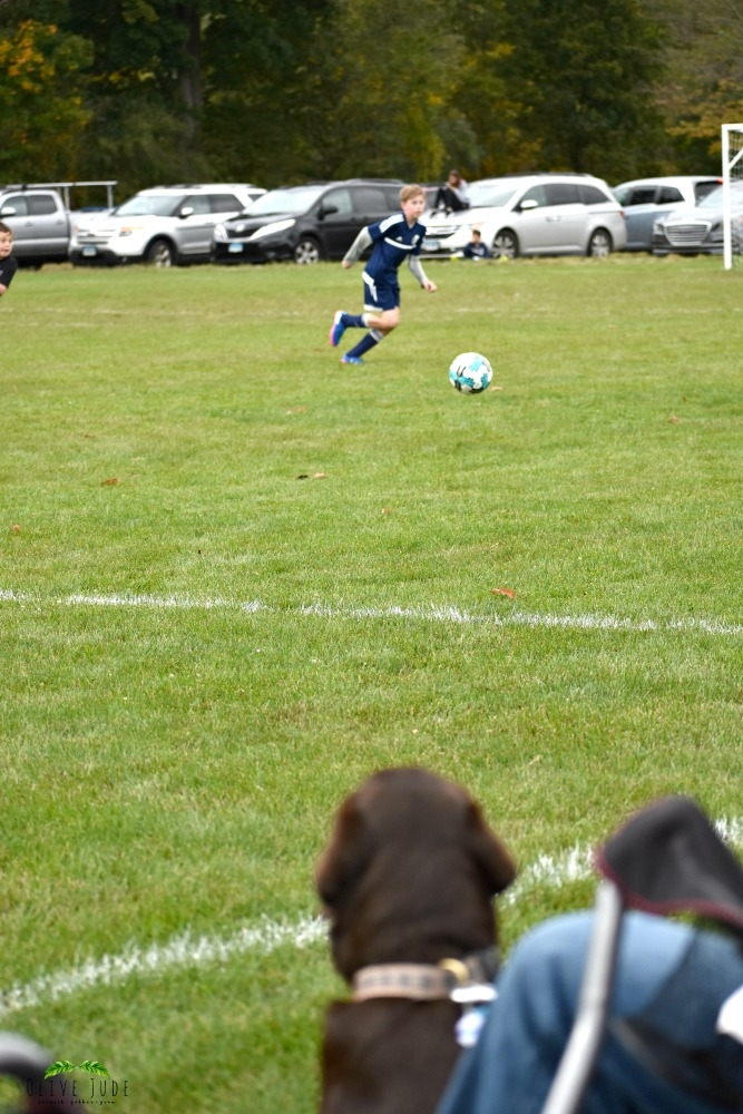 5 Puppy Must-Haves for a Fall Soccer Game