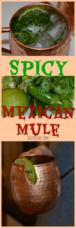 Spicy Mexican Mule #spicymoscowmule #moscowmulecocktail #spicymexicanmule #spicycocktail
