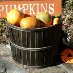 Host an Outdoor Fall Party that makes Kids and Adults Smile
