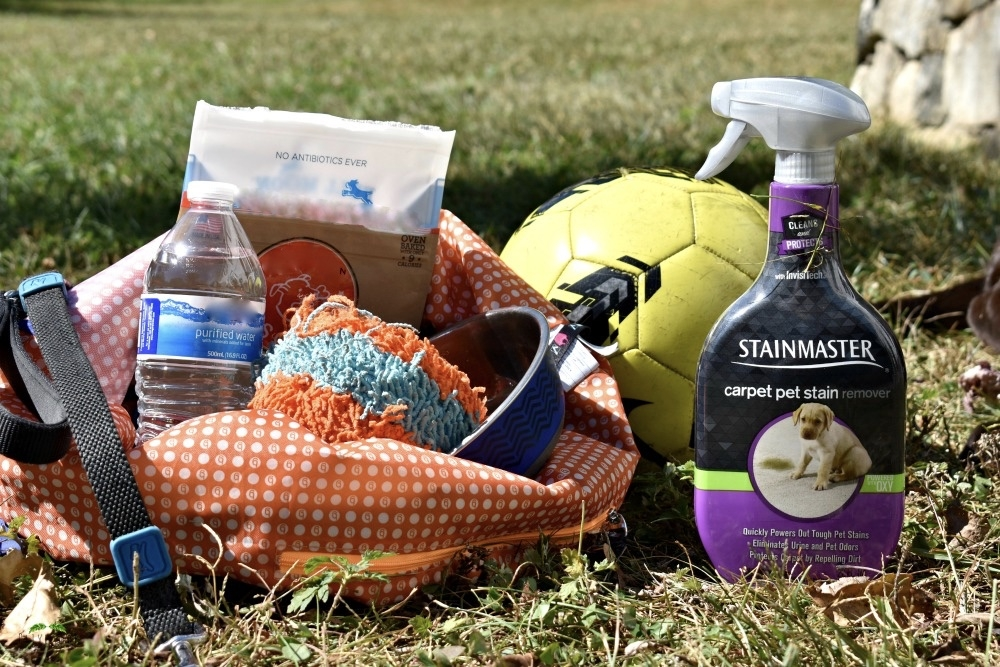 #ad 5 Puppy Must-Haves for a Fall Soccer Game #ProtectFromPetMess #SeasonalSolutions #CollectiveBias